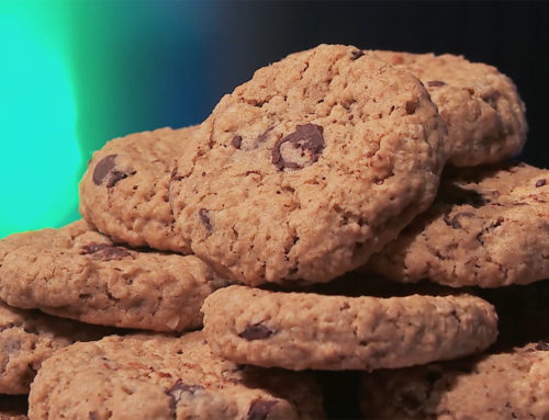 🍪 Oatmeal Chocolate Chip Cookies 🍪